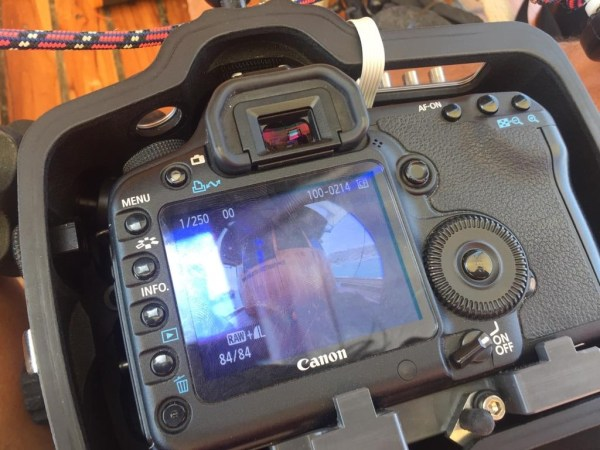 samyang underwater 1 1024x768 - Test Samyang 14mm vs Samyang Fisheye 8mm Untuk Underwater