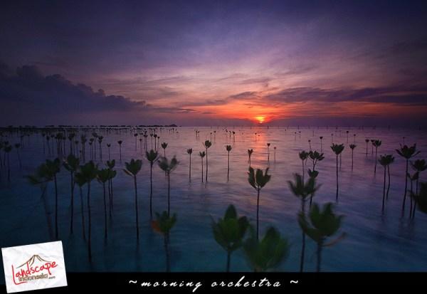 pulau seribu 016 - Filter GND perlu ndak sih buat Landscape-an ?