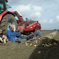 Boeren bij Den Andel