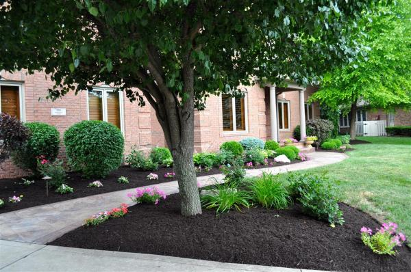 brown colored mulch indianapolis