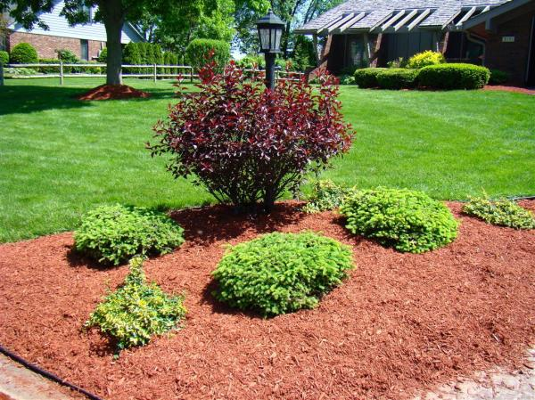 dyed red mulch bags indianapolis