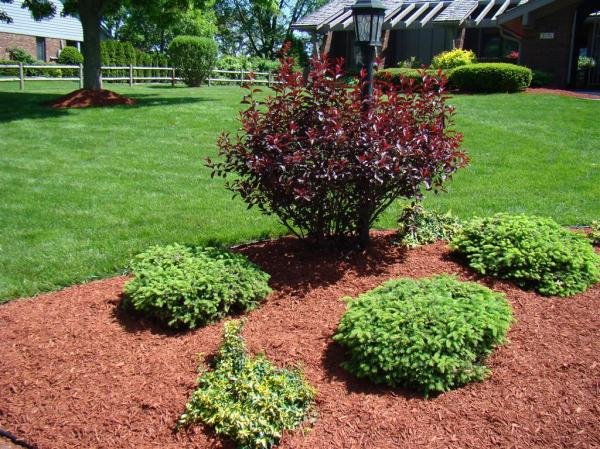 red colored mulch indianapolis