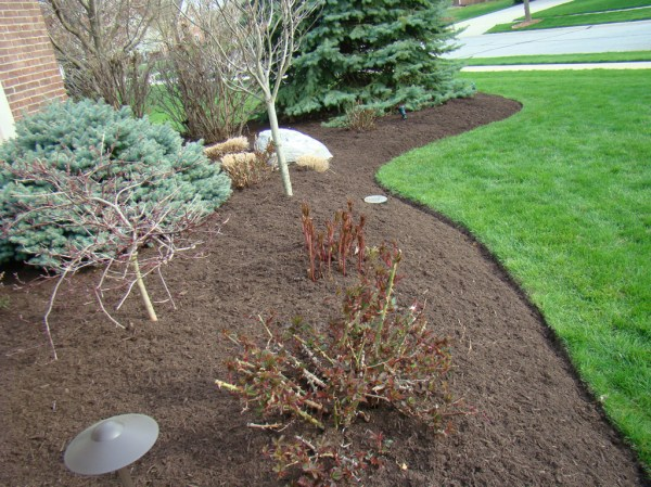 mccarty's black gold mulch indianapolis