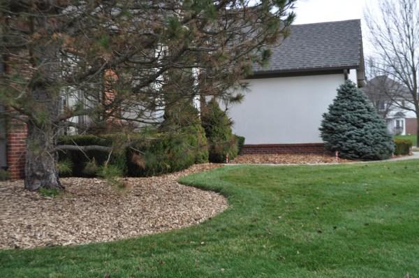 """2"""" woodchips natural bulk mulch"""