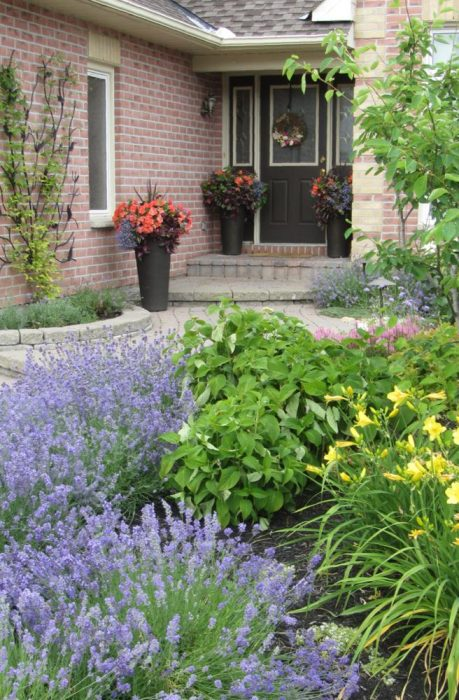 create curb appeal with landscaping