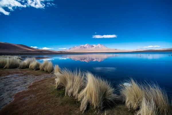 laguna canapa in bolivian highlands