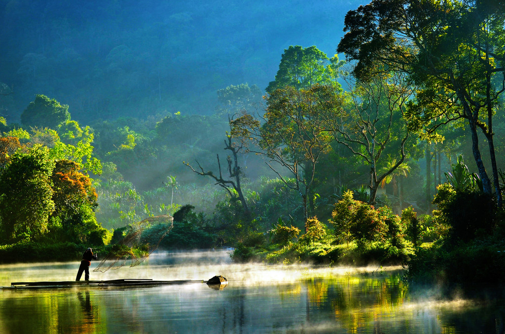 Ensuring safeguards into REDD+ can benefit developing countries beyond climate mitigation.