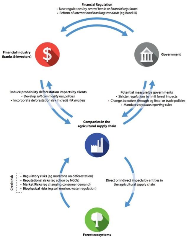 UNREDD_BANKING_ON_REDD_WEB_pdf__page_4_of_12_