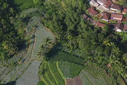 aerial view gunung halimun