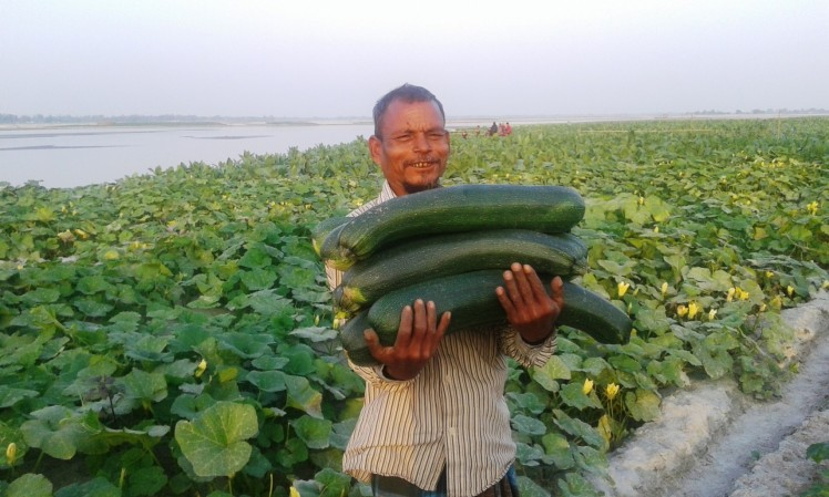 Harvesting high-value crops on transitional sandbars has helped displaced farmers to sustain a livelihood and access nutritional food for their families. International support and multi-sectoral support is needed to broaden the impact of this program.