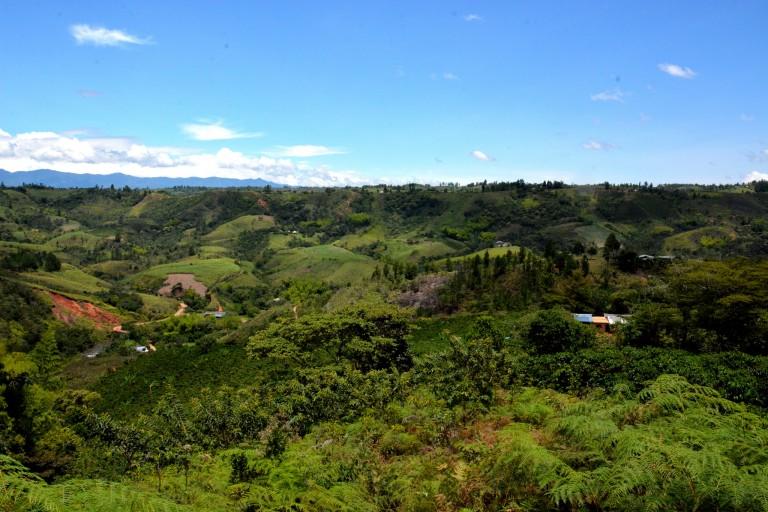 A climate-smart village in Los Cerrillos, Colombia. Photo: JL Urrea (CCAFS)