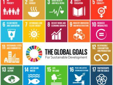 SDG infographic