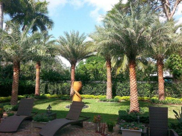 miami landscaping designers installation