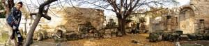 Mali frolicks in the ruins of the Roman theatre