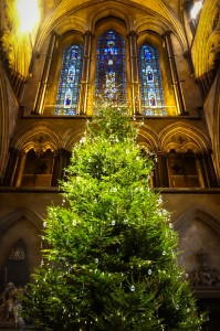 Christmas Tree in Salisbury Cathedral