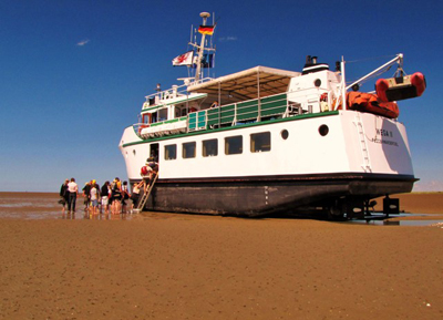 die Wega II hat sich im Wattenmeer vor Mellum