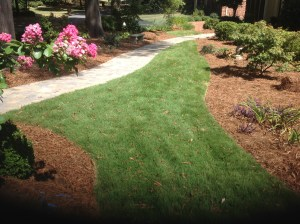 Sod and Stone walkway with plants and bedsSod and Stone walkway with plants and beds