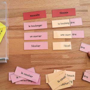 Masculin et féminin des noms ; étiquettes de manipulation Montessori ; grammaire Montessori ; flexions du nom