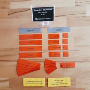 Singulier et pluriel des noms ; étiquettes de manipulation Montessori ; grammaire Montessori ; flexions du nom
