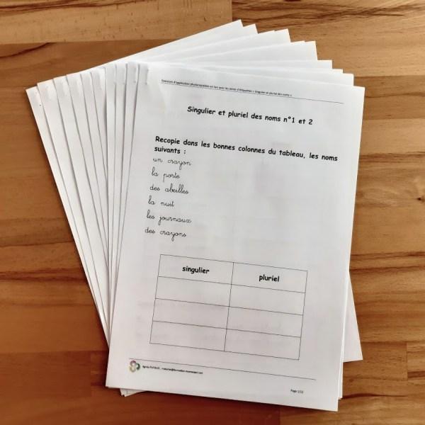Singulier et pluriel des noms ; étiquettes de manipulation Montessori ; grammaire Montessori ; flexions du nom ; exercices d'application