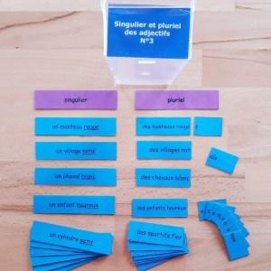 Singulier et pluriel des adjectifs ; étiquettes de manipulation Montessori ; grammaire Montessori ; flexions de l'adjectif
