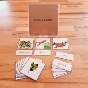 5ème série d'écriture-lecture ; dictées muettes Montessori; lecture du mot Montessori; apprendre à lire et à écrire en pédagogie Montessori; série marronMontessori ; mots à lire