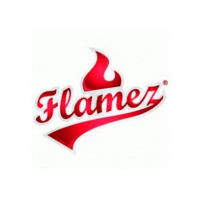 Flamez_Logo