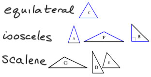 properties of triangles and quadrilaterals