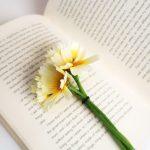 3 libri belli che ho letto di recente