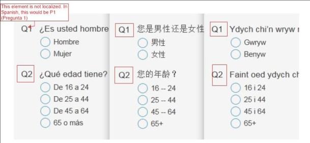 Snap survey translation sample