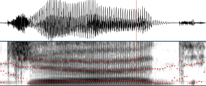spectrogram and waveform
