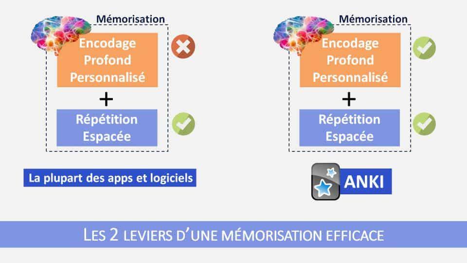 Anki est le seul outil de répétition espacée existant à ce jour qui permet d'adresser les deux aspects du processus de mémorisation