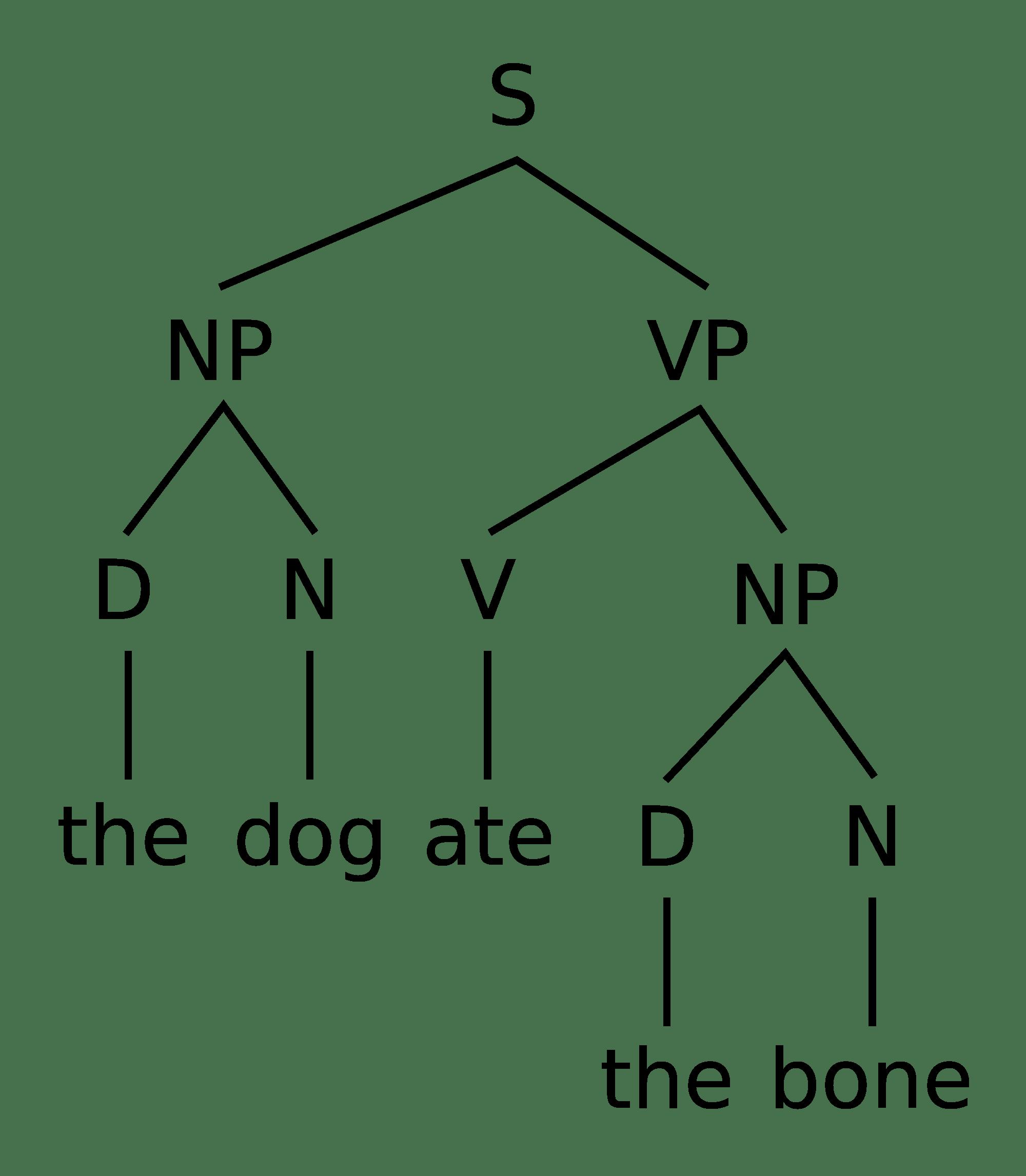 Ekaterina Lyutikova on Syntax Models (Or