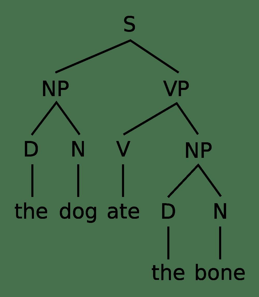 medium resolution of simple tree