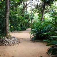 Spice Gardens in Sri lanka