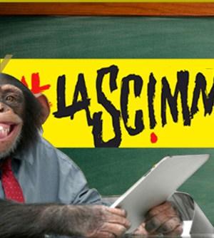La-scimmia-valsecchi