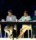 X-Factor7-anticipazioni-stagione