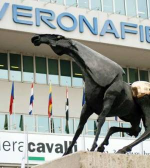 fiera-cavalli