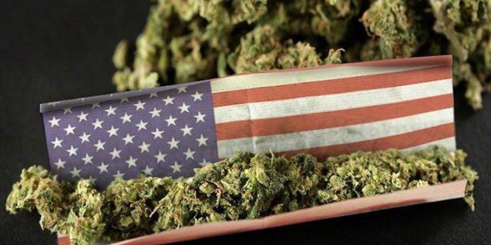 usa weed.jpg