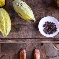 Vieux Habitants, pépite historique de la Guadeloupe