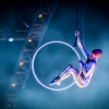 Quidam by Le Cirque du Soleil - The Show