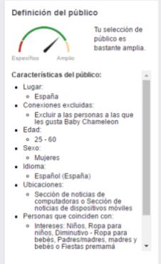 Resumen Definicion Publico Facebook Ads