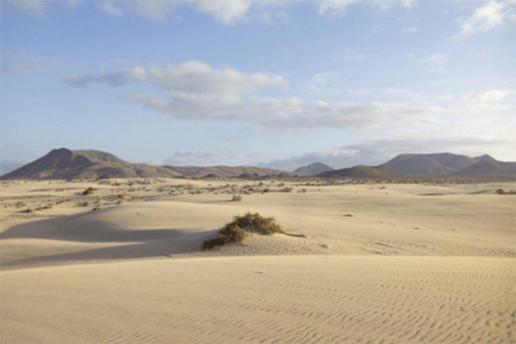 sand dunes fuerteventura