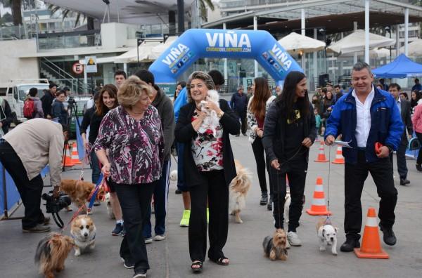 Alcaldesa Virginia Reginato, lanzamiento perro running 1