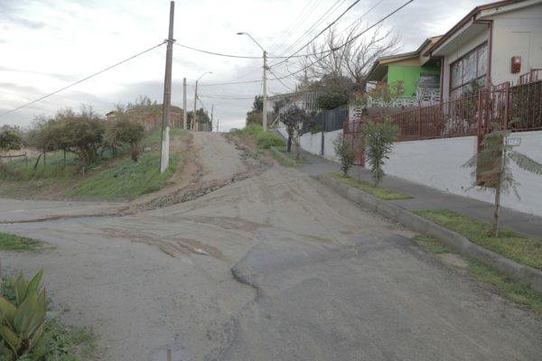 Calle Las Rosas 1