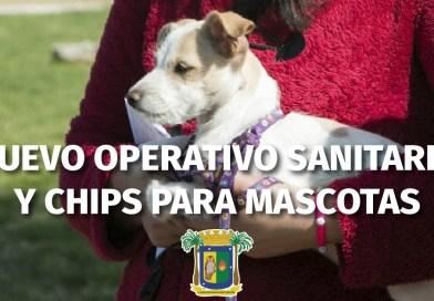 Concón: Municipio prepara nuevo Operativo de Mascotas en sector rural para fin de semana