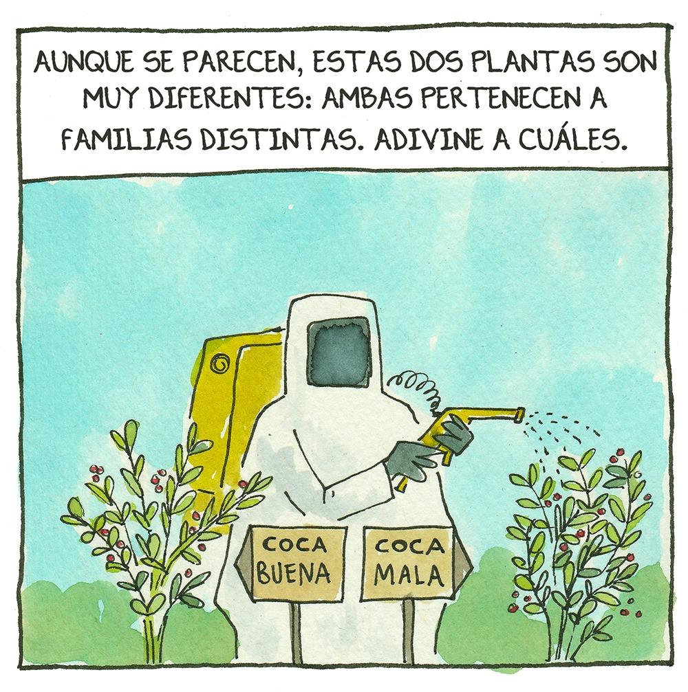 Jardinería en la pandemia