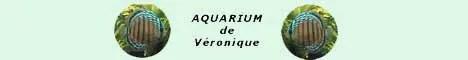Aquarium de Véronique
