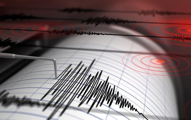 (VIDEO) Fuerte sismo sacude San Salvador - Diario La Página - Diario La Página