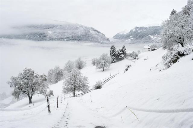 Vista general de un paraje cubierto completamente por la nieve, en Sargans, al este de Suiza, hoy, jueves 6 de noviembre de 2014. EFE/Gian Ehrenzeller